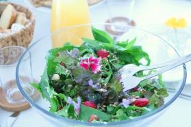 Salada brunch
